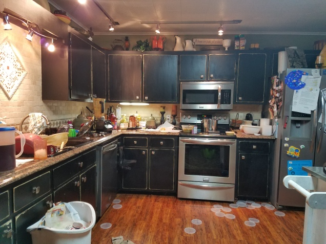 Messy kitchen with black cabinets while making a blended diet